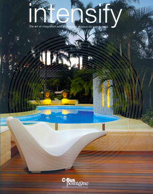 Intensify Spring 2008 Cover